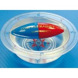 Magnetyczny kompas